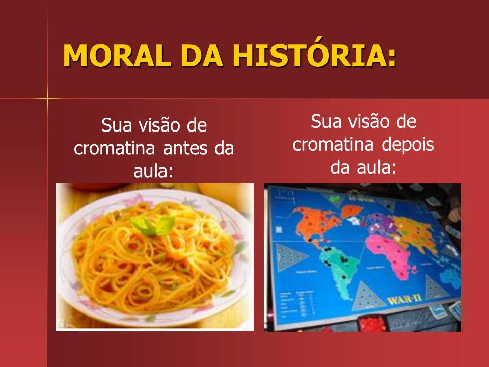MORAL DA HISTÓRIA: Sua visão de cromatina depois da aula: