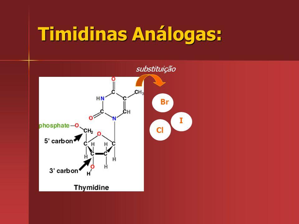 Timidinas Análogas: substituição Br I Cl