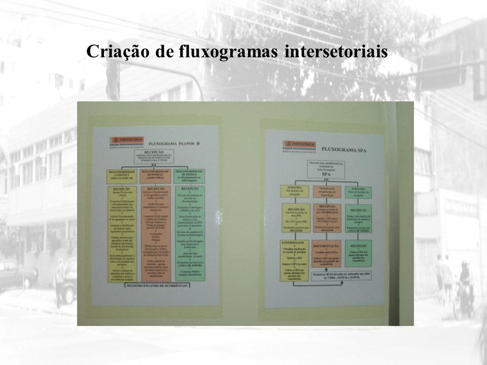 Criação de fluxogramas intersetoriais