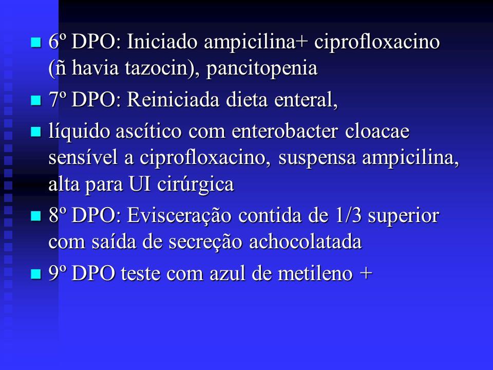 6º DPO: Iniciado ampicilina+ ciprofloxacino (ñ havia tazocin), pancitopenia