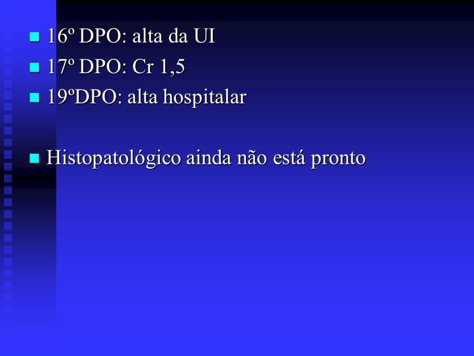 16º DPO: alta da UI 17º DPO: Cr 1,5 19ºDPO: alta hospitalar Histopatológico ainda não está pronto