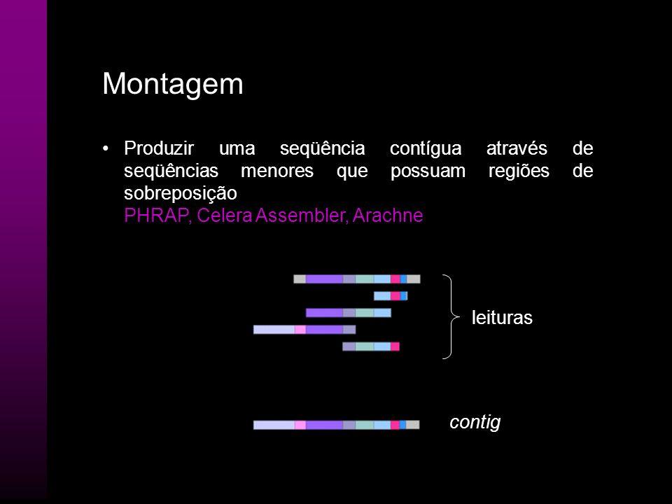 MontagemProduzir uma seqüência contígua através de seqüências menores que possuam regiões de sobreposição.