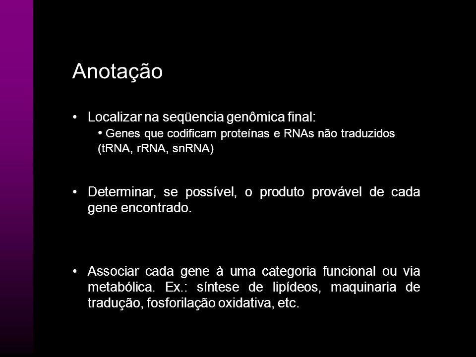 Anotação Localizar na seqüencia genômica final: