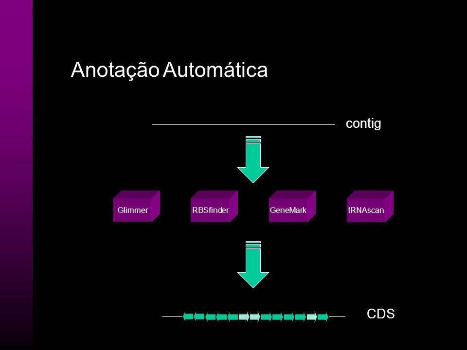 Anotação Automática contig Glimmer RBSfinder GeneMark tRNAscan CDS