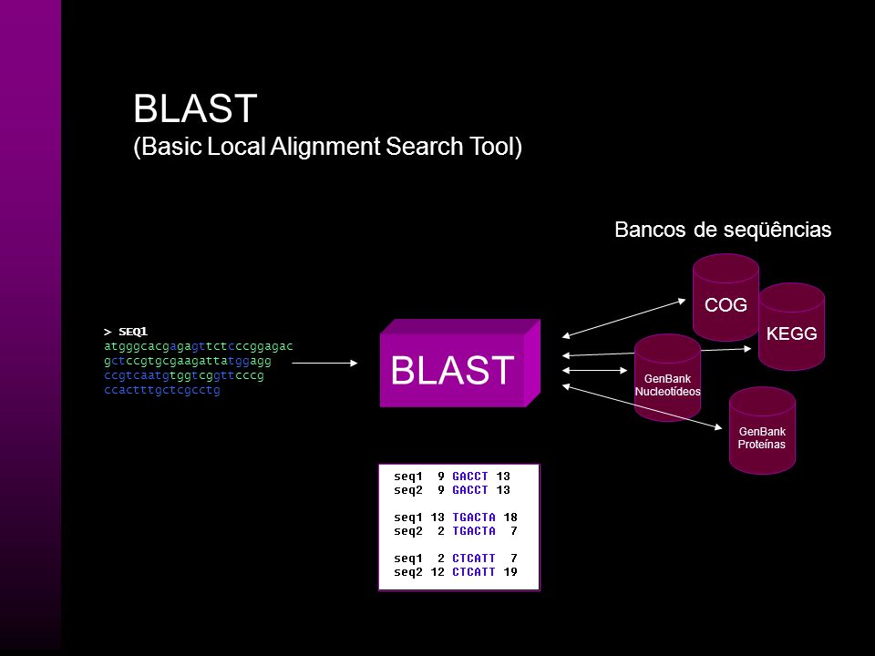 BLAST BLAST (Basic Local Alignment Search Tool) Bancos de seqüências