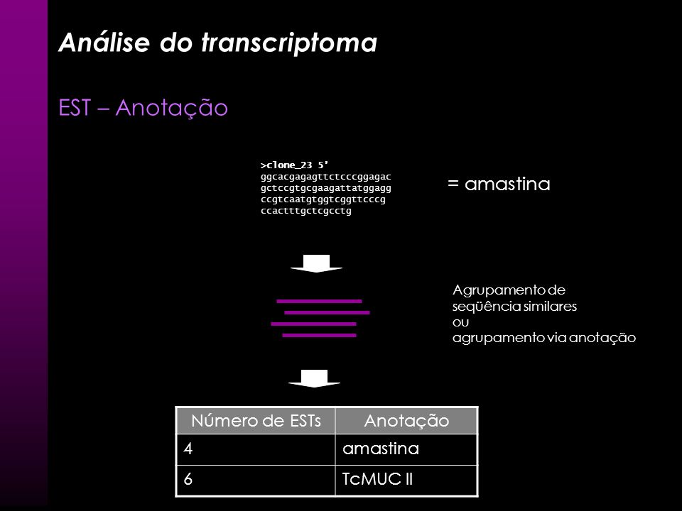 Análise do transcriptoma