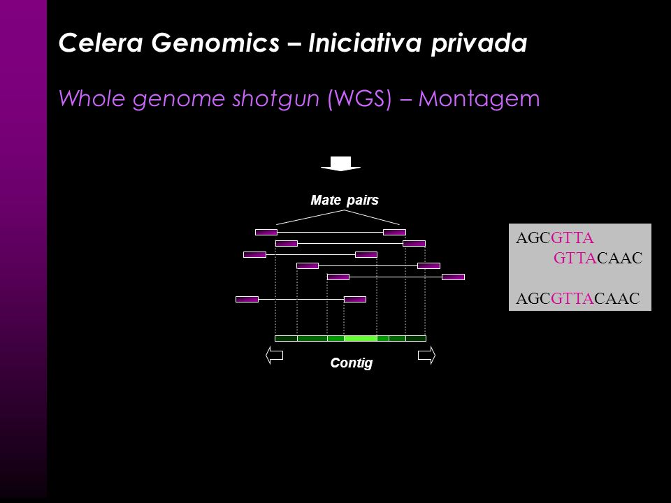 Celera Genomics – Iniciativa privada