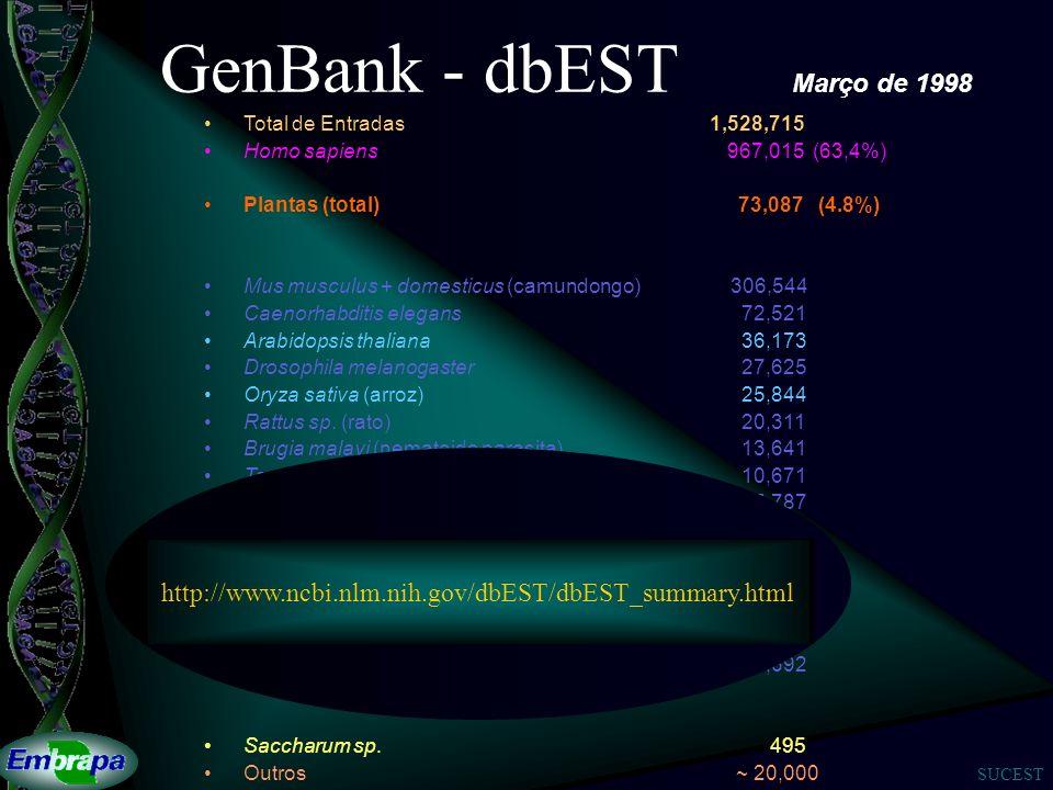 GenBank - dbEST Março de 1998