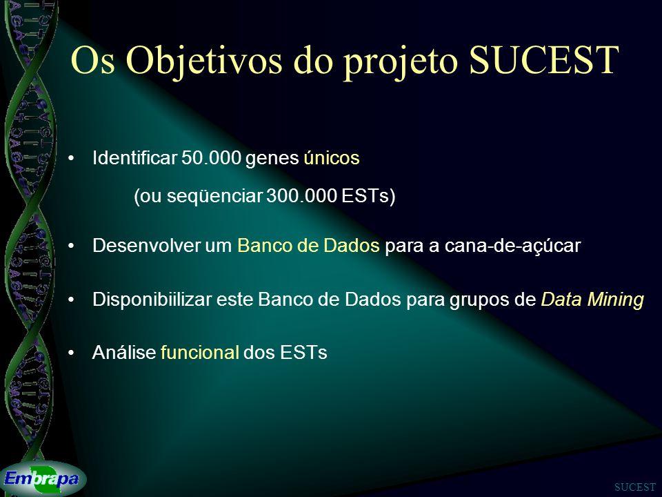 Os Objetivos do projeto SUCEST