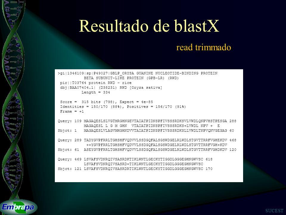 Resultado de blastX read trimmado