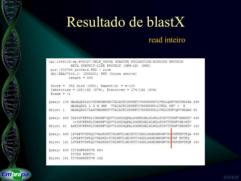 Resultado de blastX read inteiro