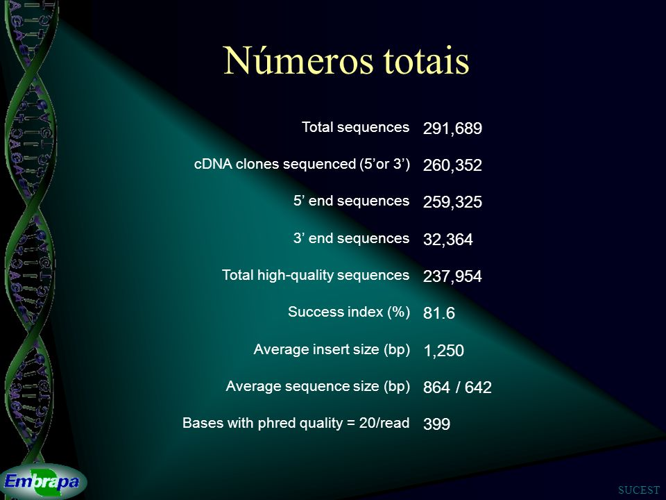 Números totais Total sequences. 291,689. cDNA clones sequenced (5'or 3') 260,352. 5' end sequences.