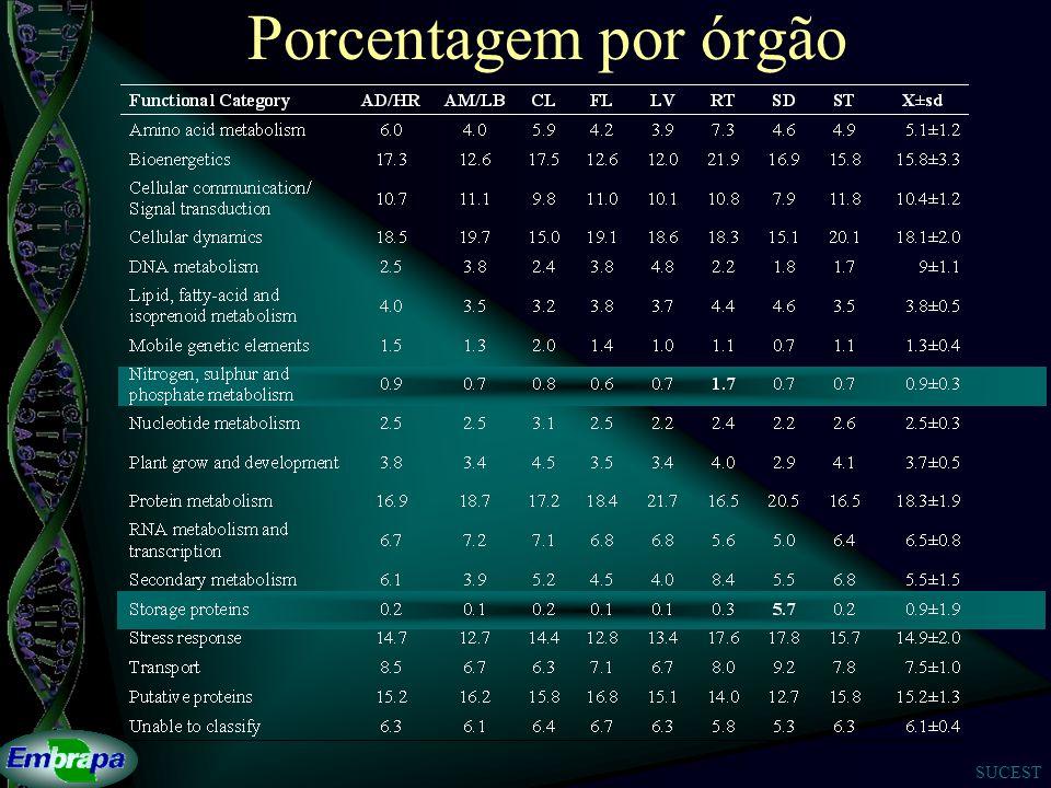 Porcentagem por órgão