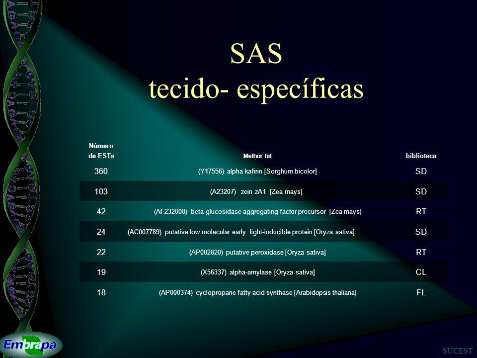 SAS tecido- específicas