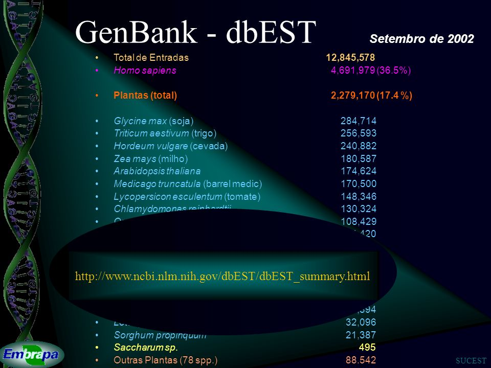 GenBank - dbEST Setembro de 2002
