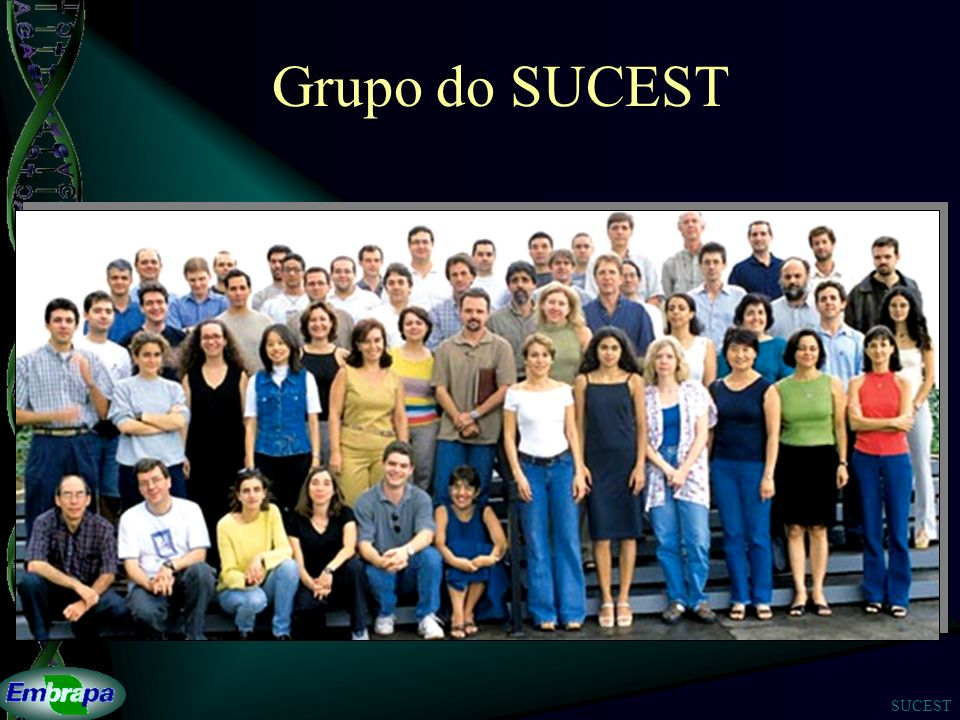 Grupo do SUCEST