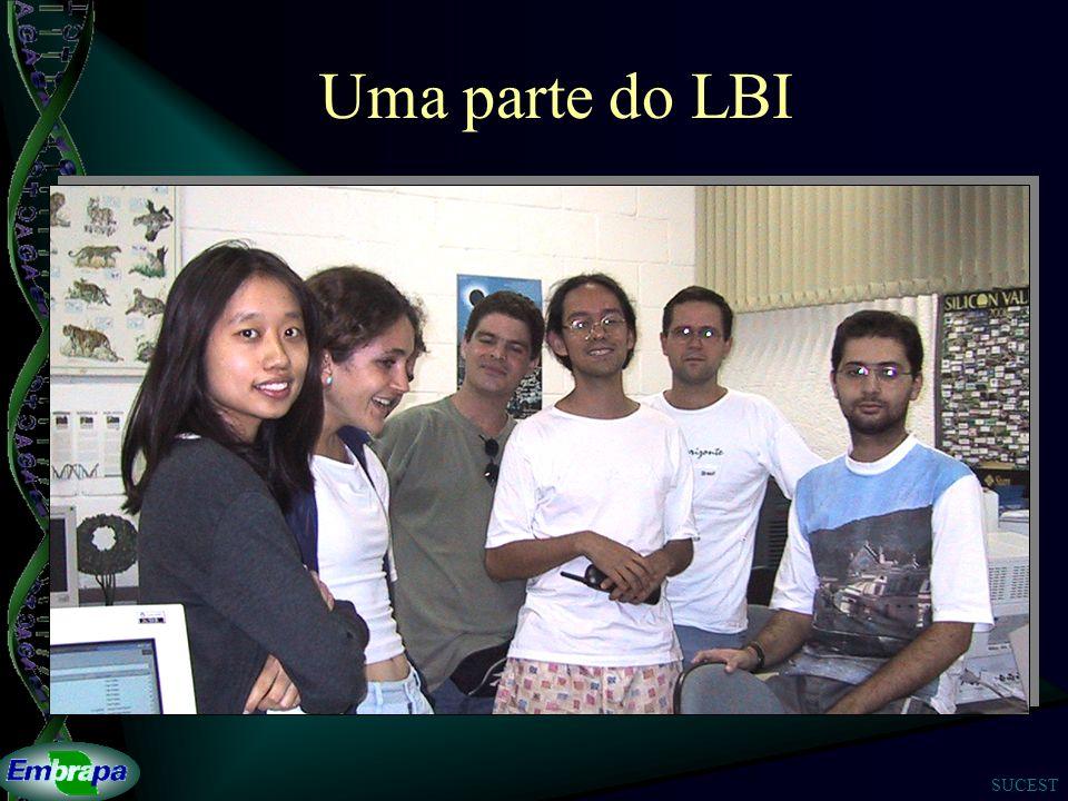 Uma parte do LBI
