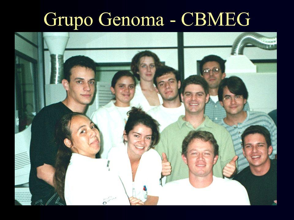 Grupo Genoma - CBMEG