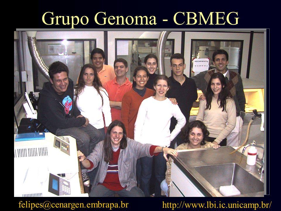Grupo Genoma - CBMEG felipes@cenargen.embrapa.br