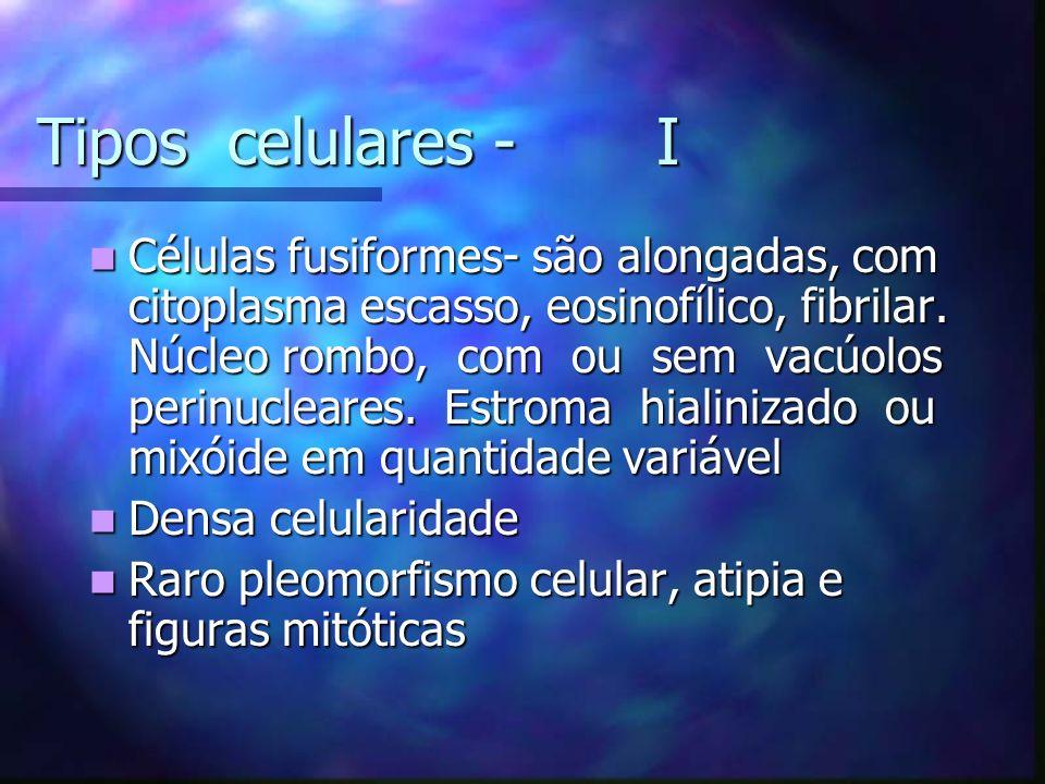 Tipos celulares - I