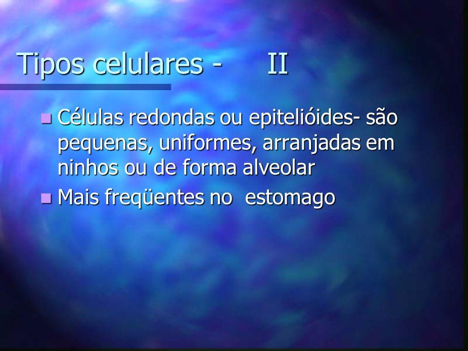 Tipos celulares - II Células redondas ou epitelióides- são pequenas, uniformes, arranjadas em ninhos ou de forma alveolar.