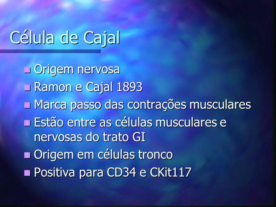 Célula de Cajal Origem nervosa Ramon e Cajal 1893