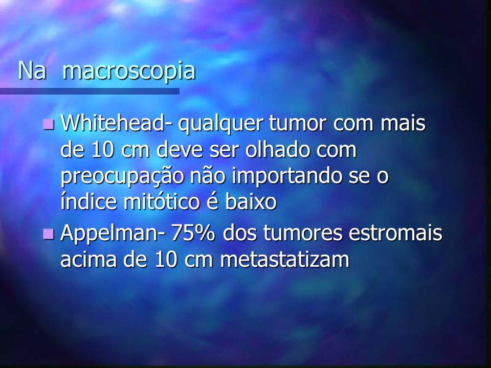 Na macroscopia Whitehead- qualquer tumor com mais de 10 cm deve ser olhado com preocupação não importando se o índice mitótico é baixo.