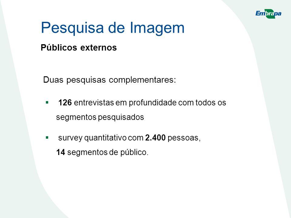 Pesquisa de Imagem Públicos externos Duas pesquisas complementares: