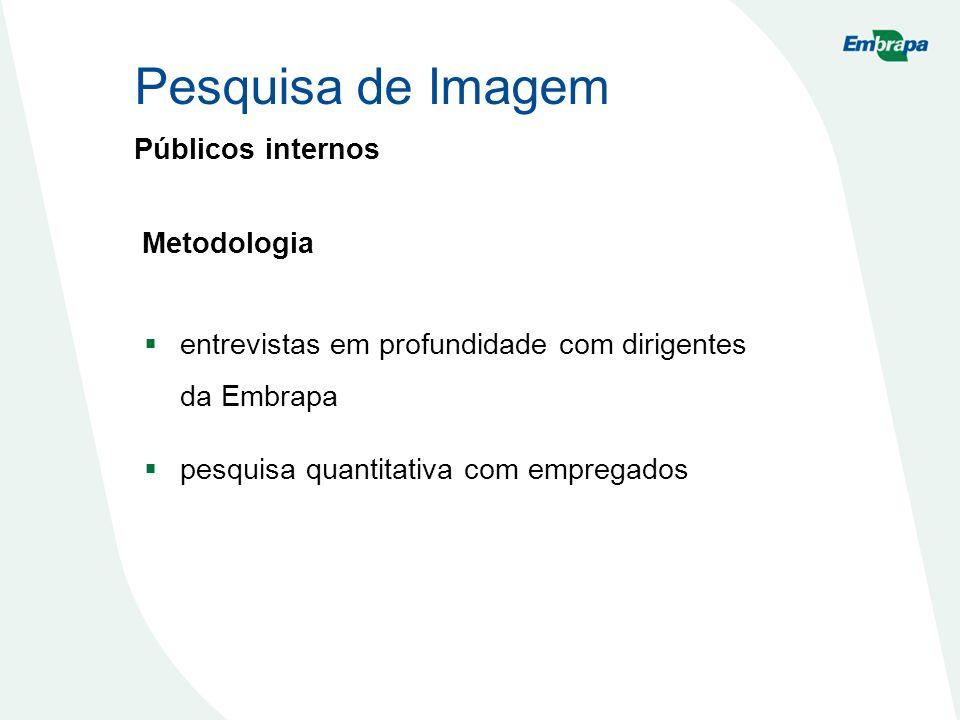 Pesquisa de Imagem Públicos internos Metodologia