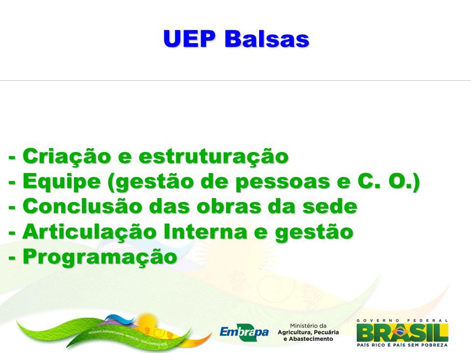 UEP Balsas - Criação e estruturação