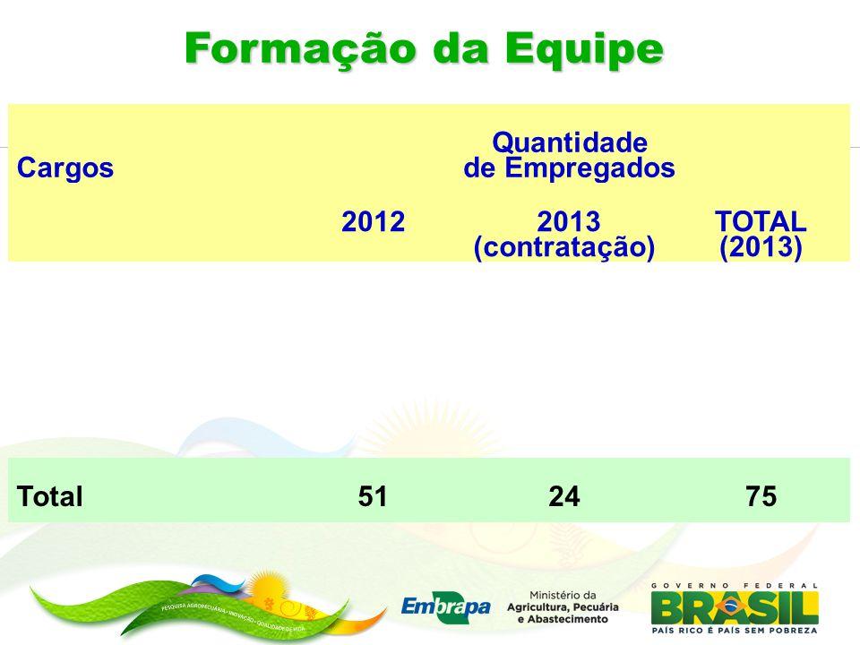 Formação da Equipe Cargos Quantidade de Empregados 2012