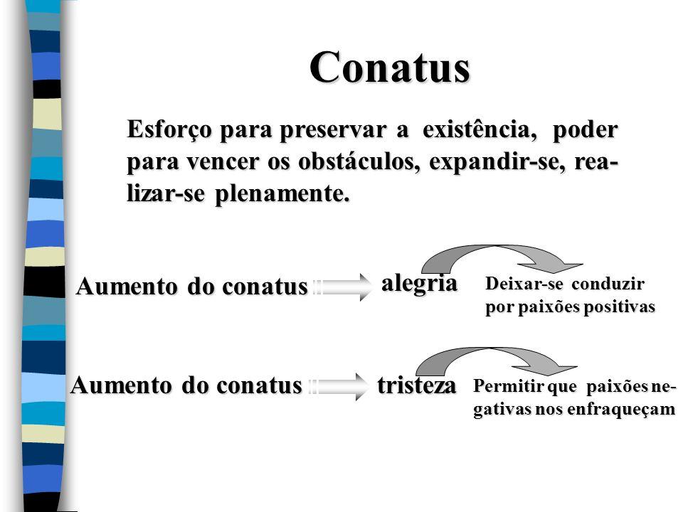 Conatus Esforço para preservar a existência, poder