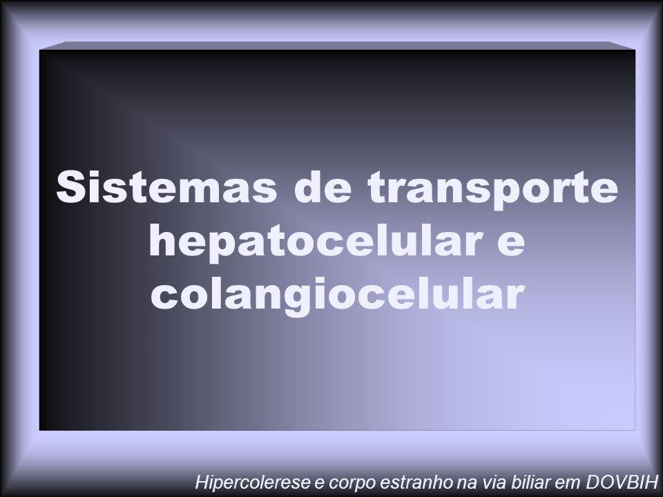 Sistemas de transporte hepatocelular e colangiocelular