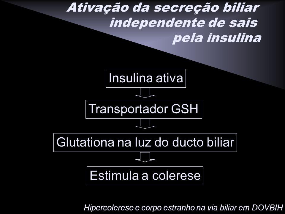 Ativação da secreção biliar independente de sais pela insulina