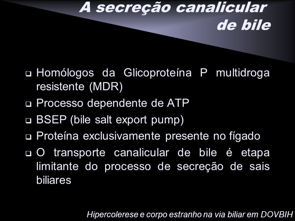 A secreção canalicular de bile