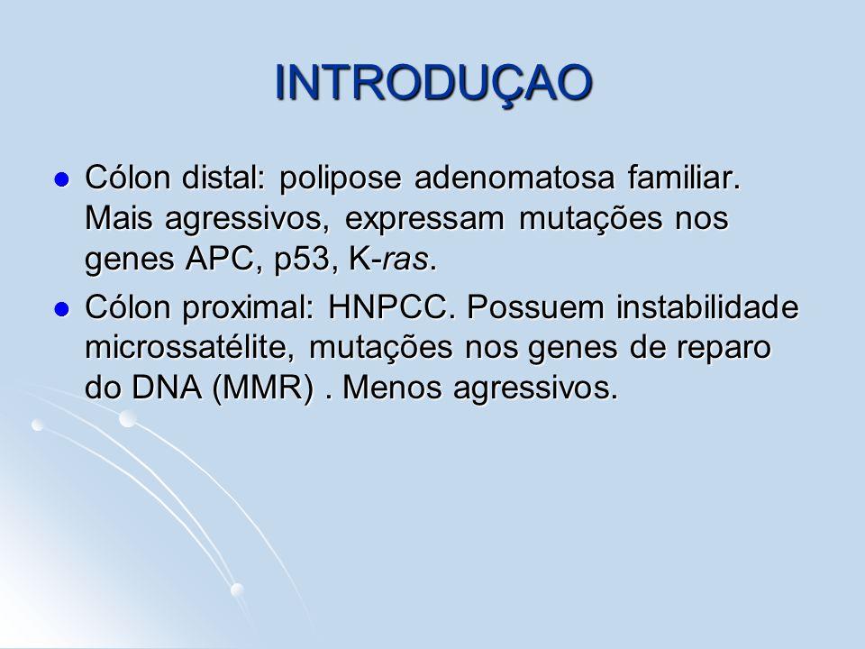 INTRODUÇAOCólon distal: polipose adenomatosa familiar. Mais agressivos, expressam mutações nos genes APC, p53, K-ras.