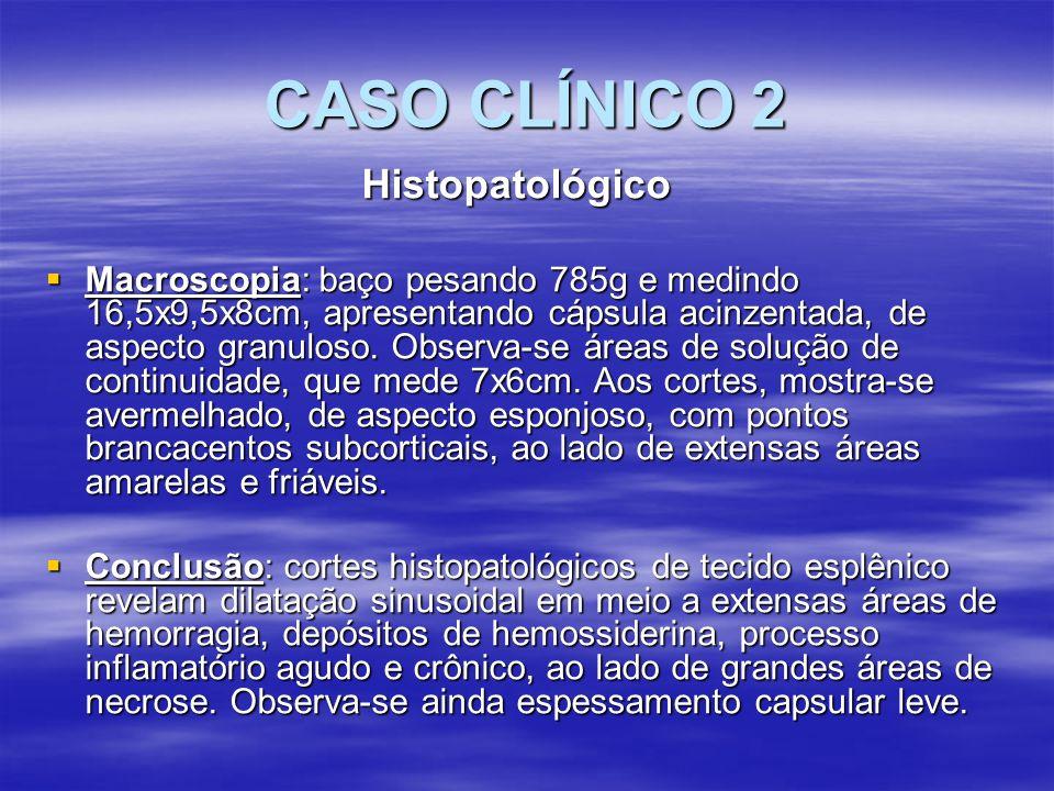 CASO CLÍNICO 2 Histopatológico