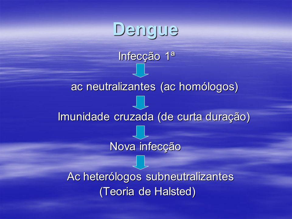 Dengue Infecção 1ª ac neutralizantes (ac homólogos)
