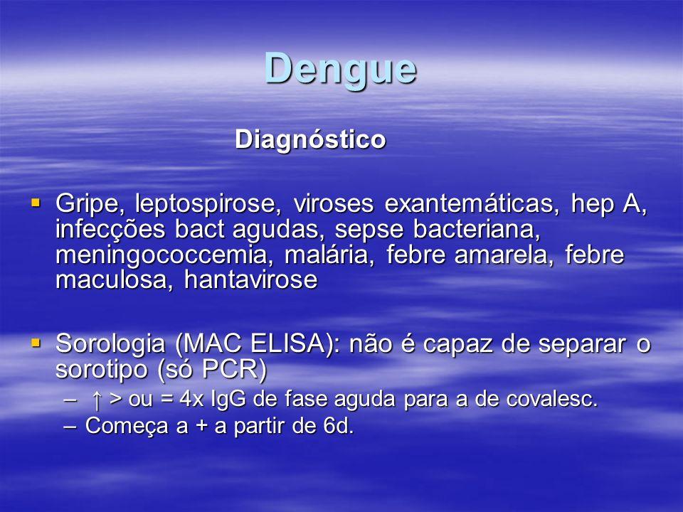 Dengue Diagnóstico.