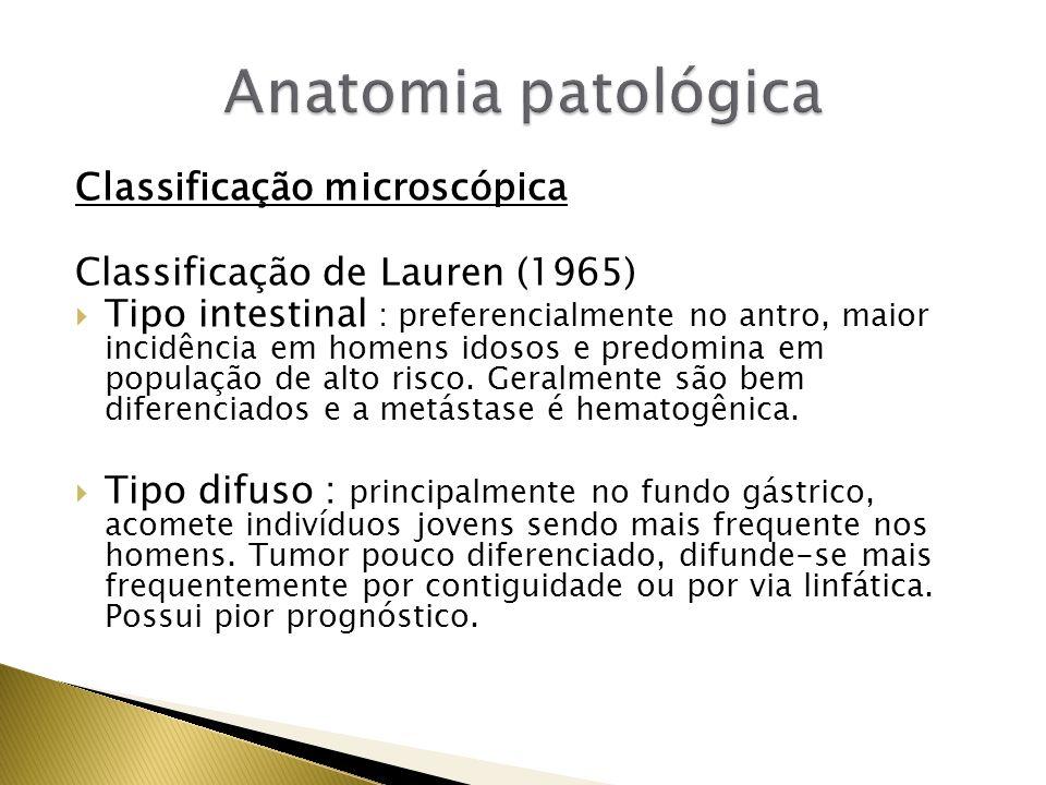 Anatomia patológica Classificação microscópica