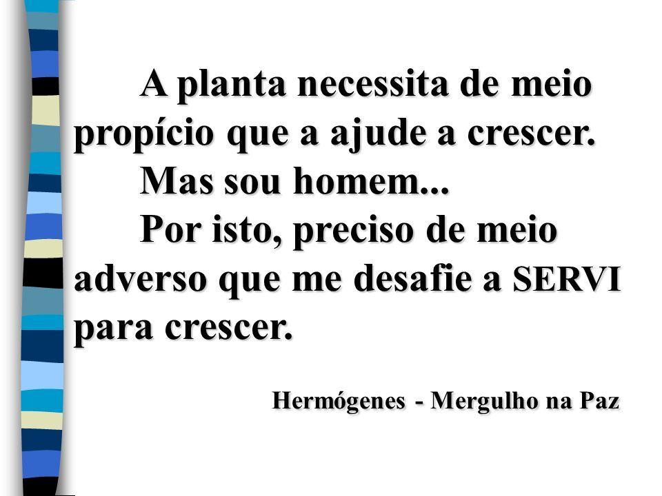 Hermógenes - Mergulho na Paz