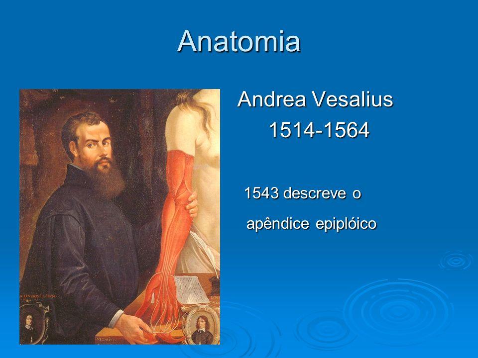 Anatomia Andrea Vesalius 1514-1564 1543 descreve o apêndice epiplóico