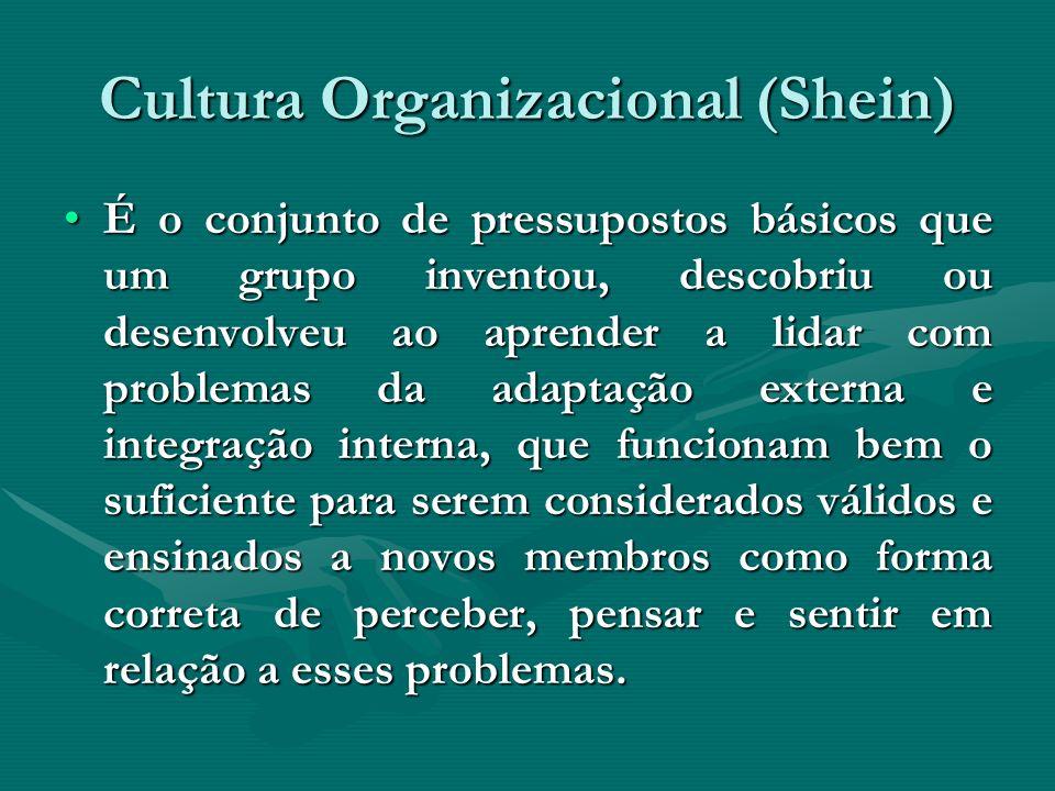 Cultura Organizacional (Shein)