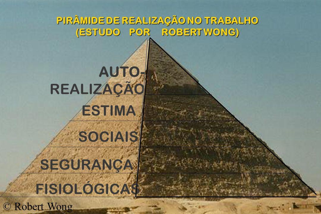 PIRÂMIDE DE REALIZAÇÃO NO TRABALHO (ESTUDO POR ROBERT WONG)