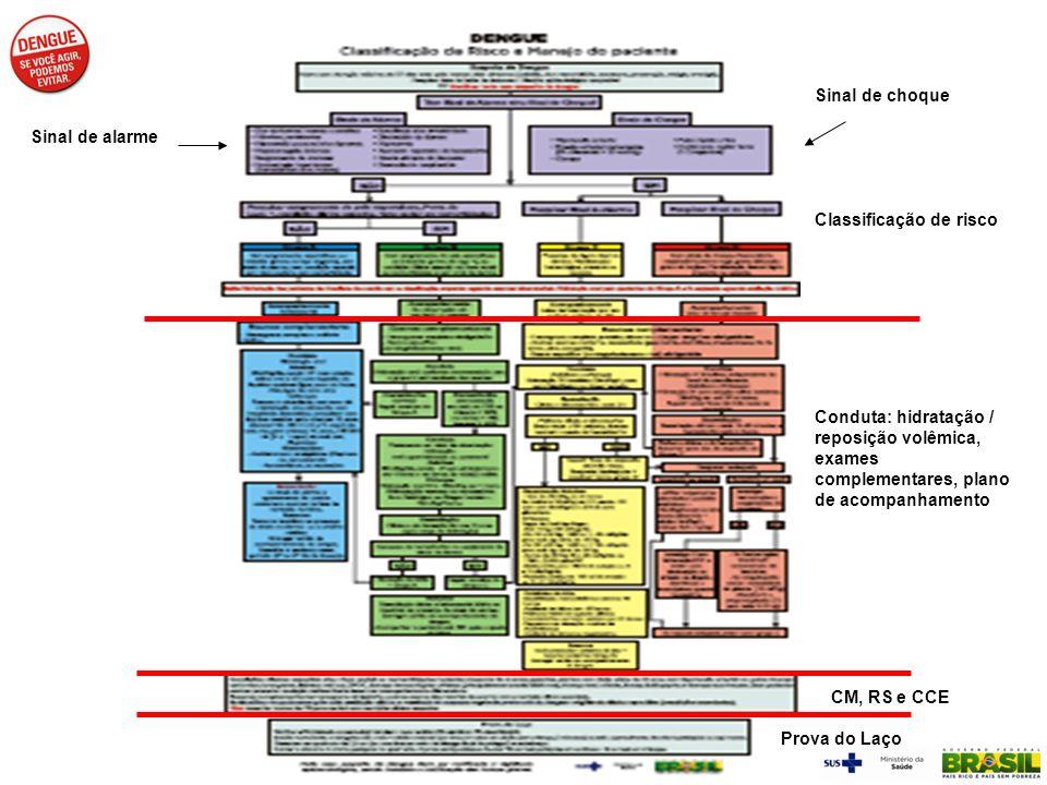 Sinal de choque Sinal de alarme. Classificação de risco. Conduta: hidratação / reposição volêmica, exames complementares, plano de acompanhamento.