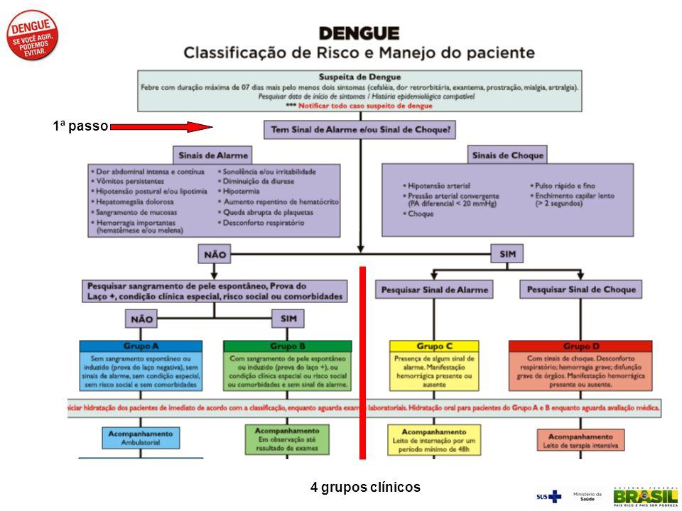 1ª passo 4 grupos clínicos