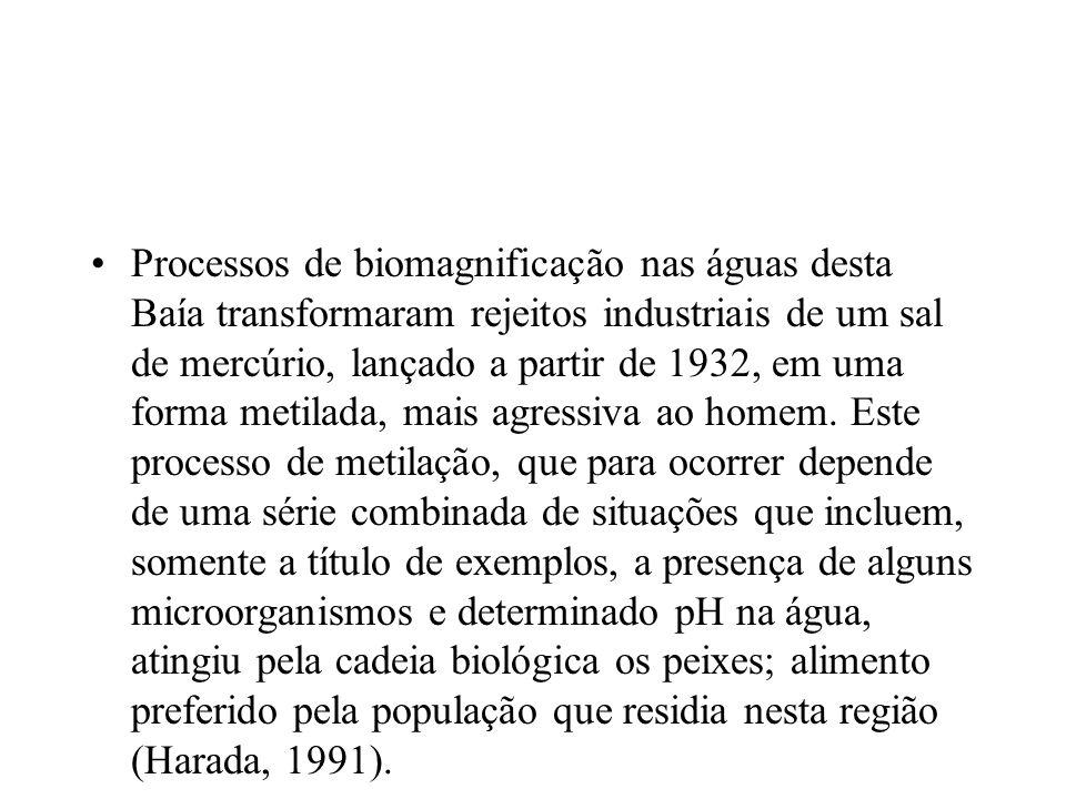 Processos de biomagnificação nas águas desta Baía transformaram rejeitos industriais de um sal de mercúrio, lançado a partir de 1932, em uma forma metilada, mais agressiva ao homem.