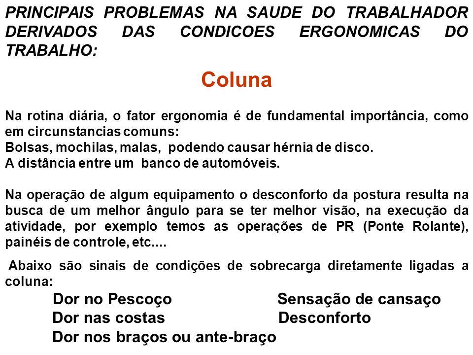 PRINCIPAIS PROBLEMAS NA SAUDE DO TRABALHADOR DERIVADOS DAS CONDICOES ERGONOMICAS DO TRABALHO: