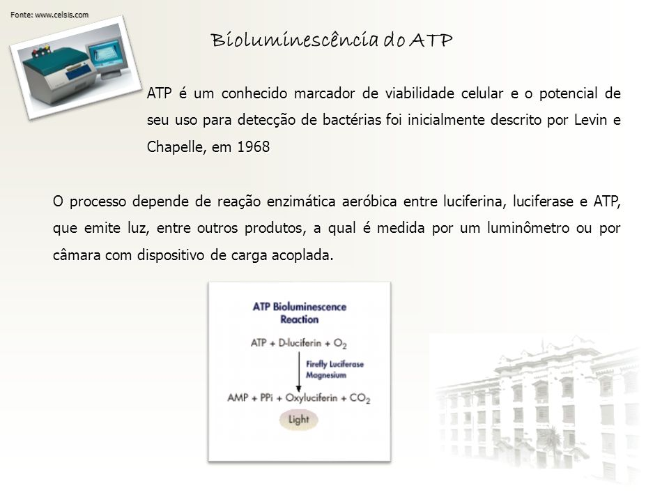 Bioluminescência do ATP
