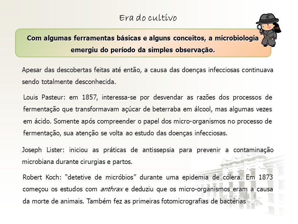 Era do cultivo Com algumas ferramentas básicas e alguns conceitos, a microbiologia emergiu do período da simples observação.